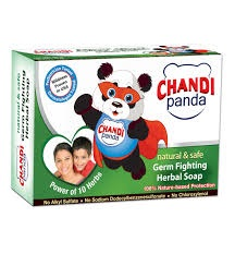 All - chandi Panda GERM FIGHTING SOAP NATURE SECRETS